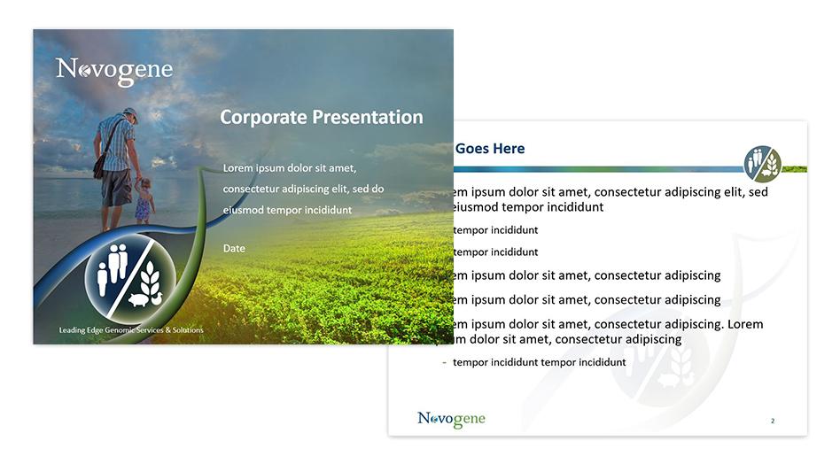 Novogene Presentation Graphics