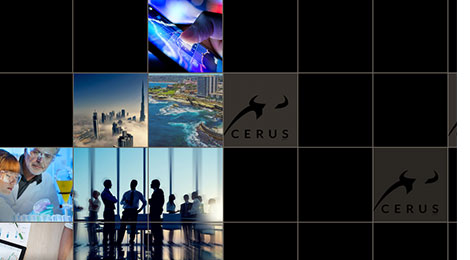 Cerus Website