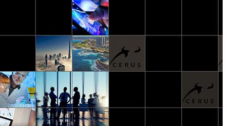 Cerus Website